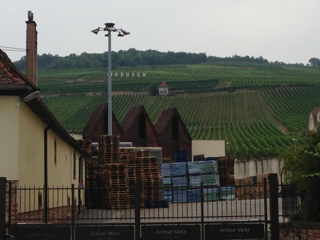 Arthur Metz in Alsace