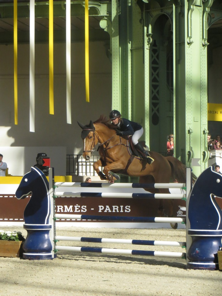 Saut d´Hermes Grand Palais Paris 2014