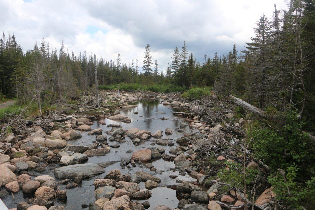 Gaspesie National Park - Lac des Americans - Quebec