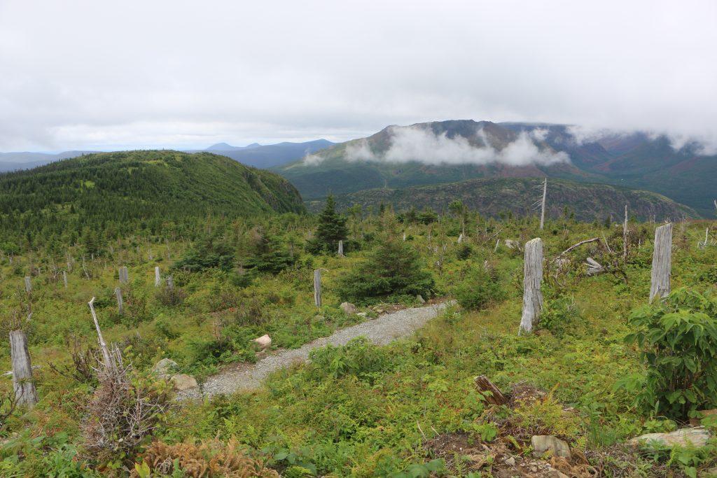 Gaspesie National Park