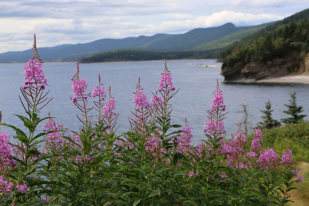 Forillon National Park - Quebec